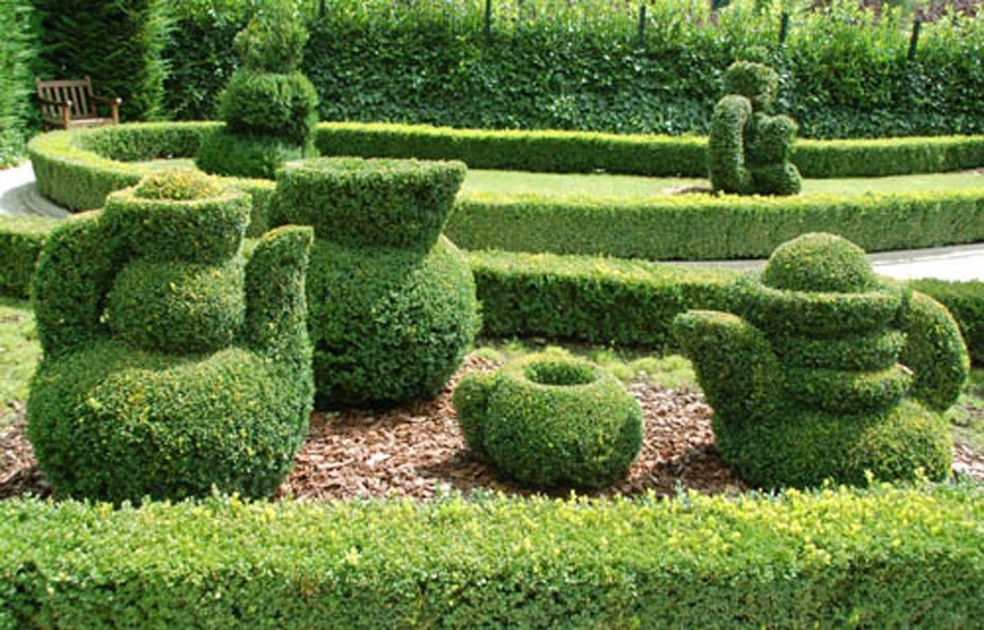 31l art topiaire page 16 for Art jardin neufchateau